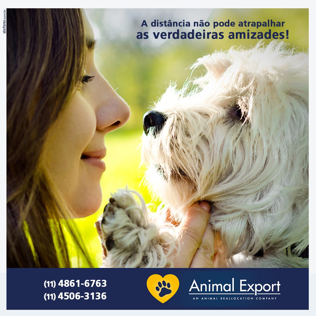 Animal Export ABR 05